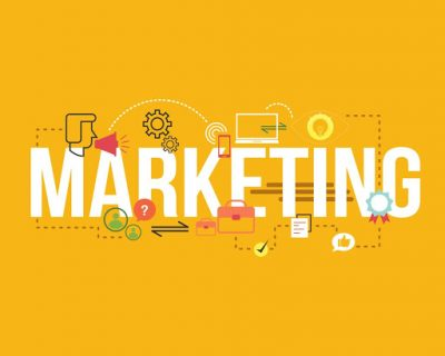 Starting and Marketing Your Business (Online Course)